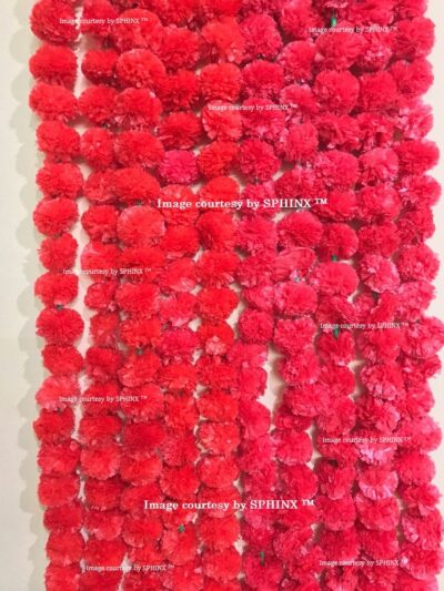 Dark pinkish red 1