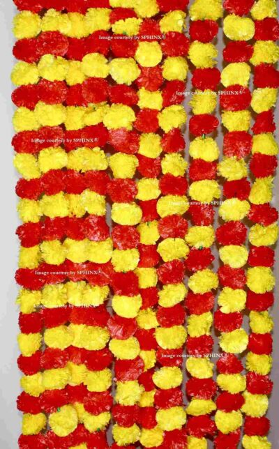 Yellow red-compressed (1)