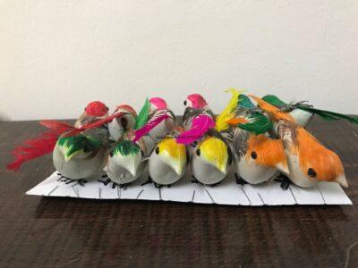 Sphinx multicolored mini birds