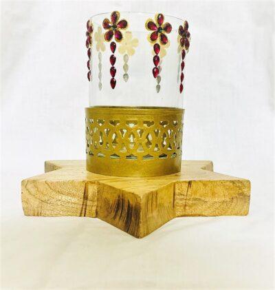 Sphinx star shape based lucky bamboo shoot holder 2